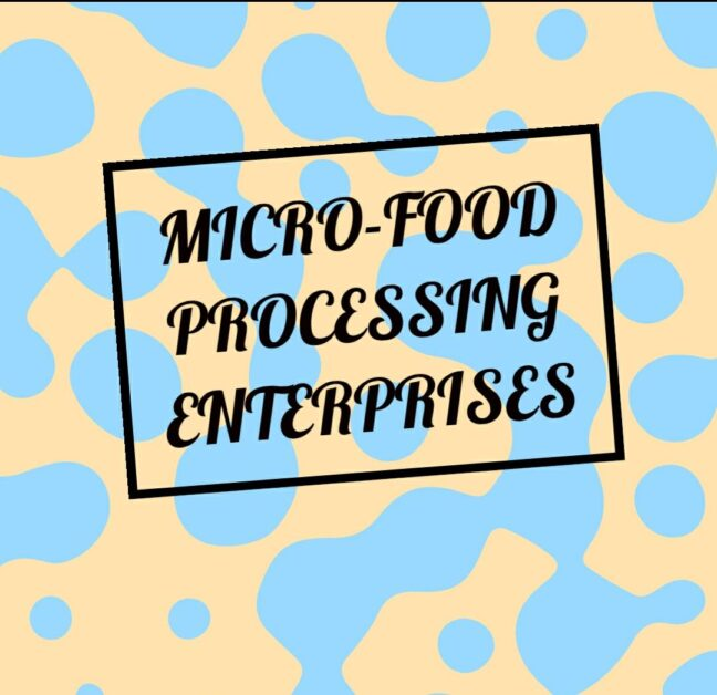 Formalisation Of Micro-Food Processing Enterprises